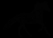 icon-azienda-cavallo